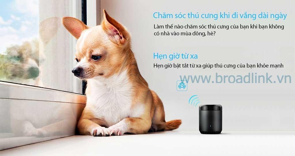 Bộ điều khiển mở rộng hồng ngoại Broadlink RM Mini 3 giúp bạn chăm sóc thú cưng khi bạn vắng nhà